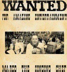 Wedding Singer Wanted